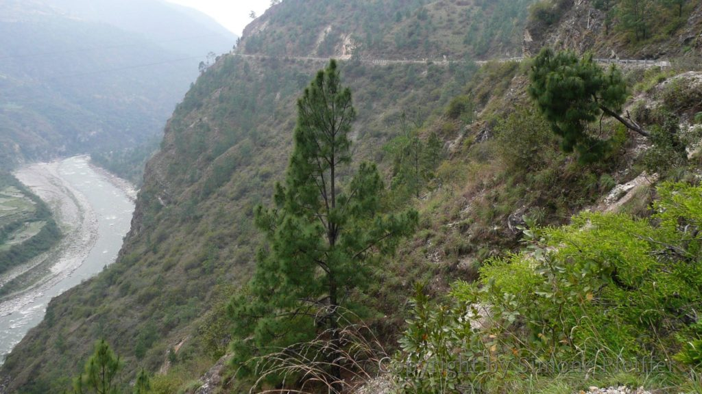 Gamri River - oben der Verlauf unserer Straße