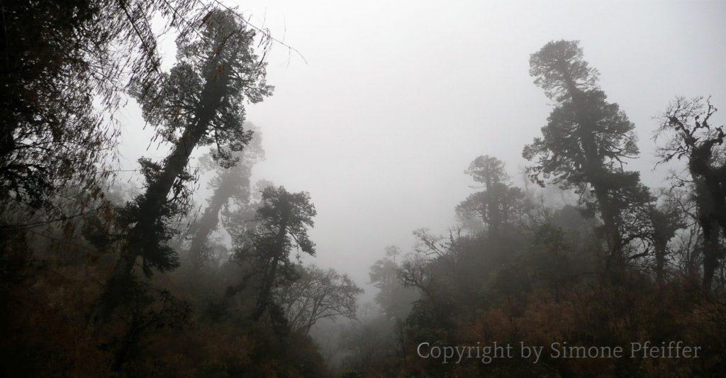 Yutongla Pass