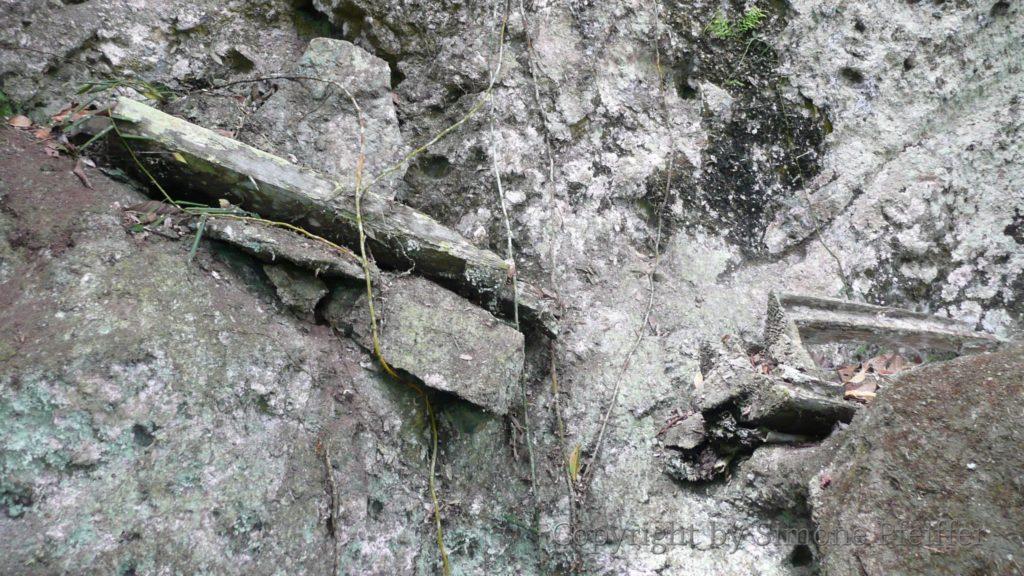 Borneo, Danum Valley, Die zerfallenden Reste eines Dusun-Grabes hoch oben am Felsen.