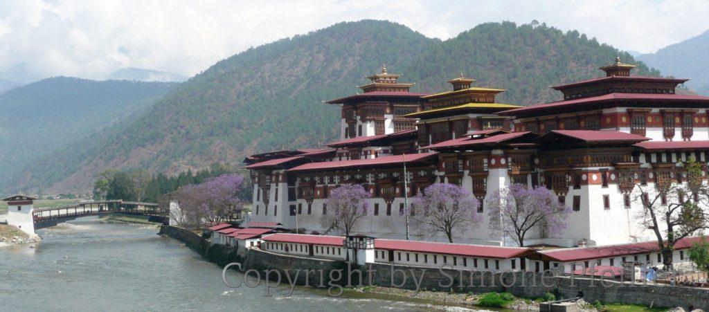 Bhutan Punakha Dzong in April www.explorations-travel.com
