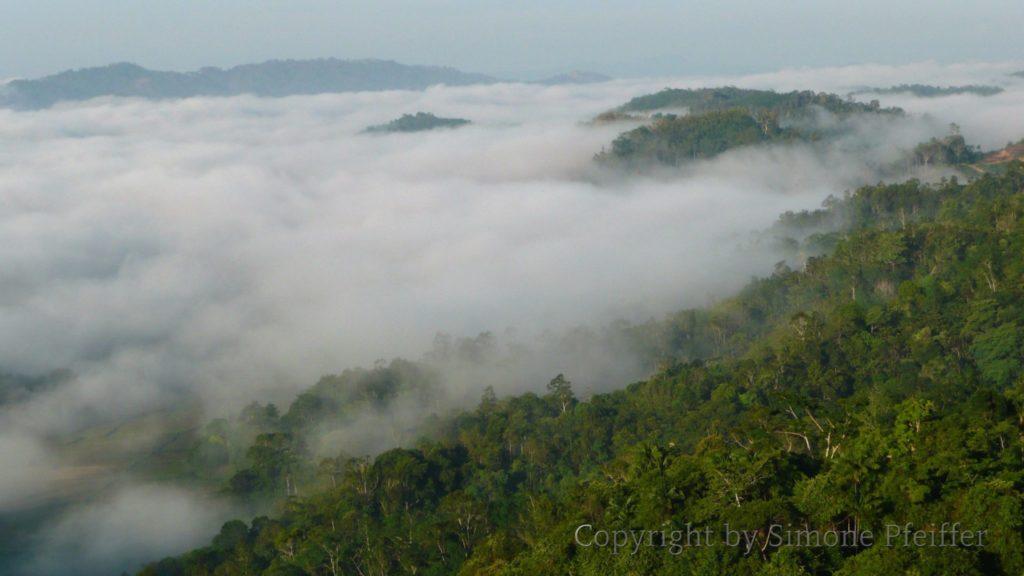 Wolken über Borneo, lautet ein Buch von Rüdiger Siebert
