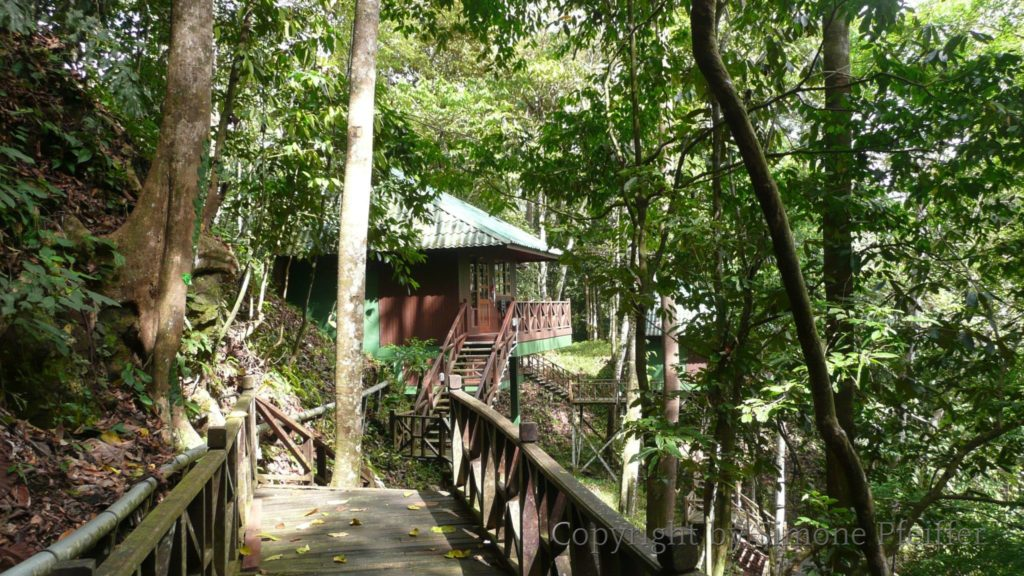 Borneo Tabin Wildlife Lodge