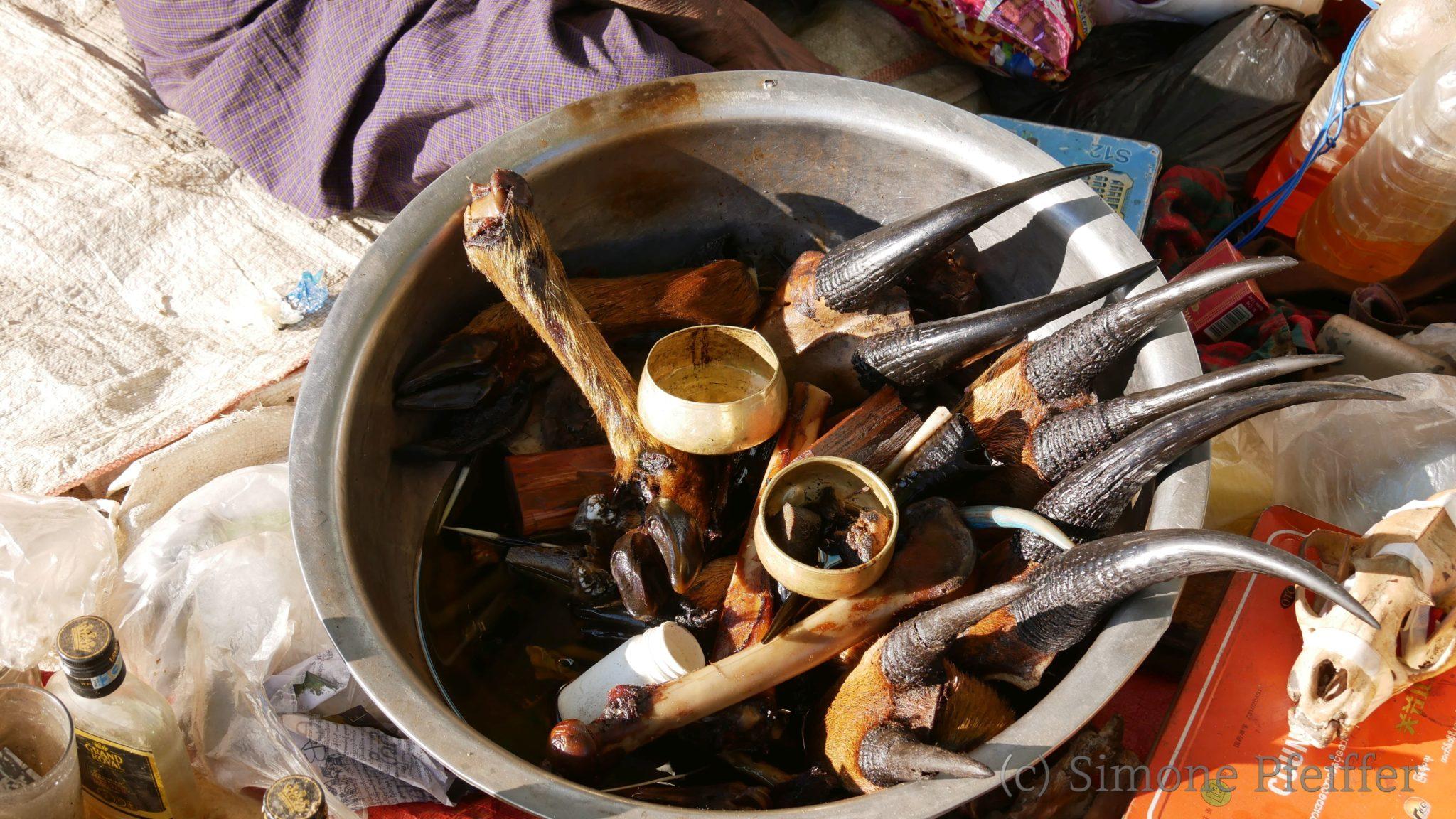 Traditionell Medicine